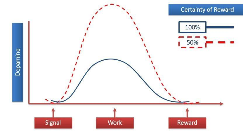 Impact of predictable rewards on the dopamine surge of users