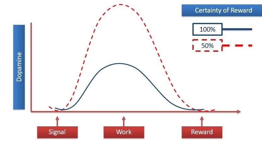 Predictability of rewards